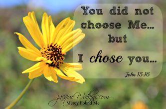 I_chose_you_med